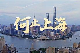 2020(第二届)上海大宗商品周花絮